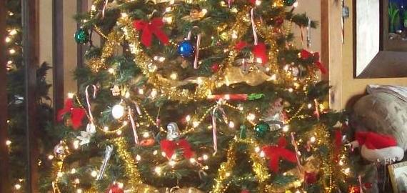 Christmas Lights From China The Ethics Of Illumination