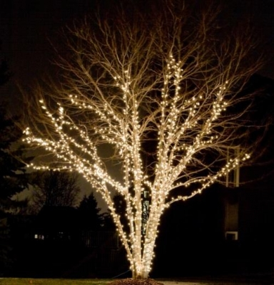 How To: Buy the LED lights and supplies you need for Christmas